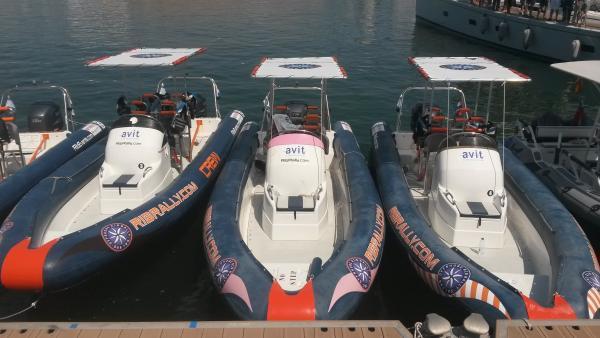 Fleet with biminitops